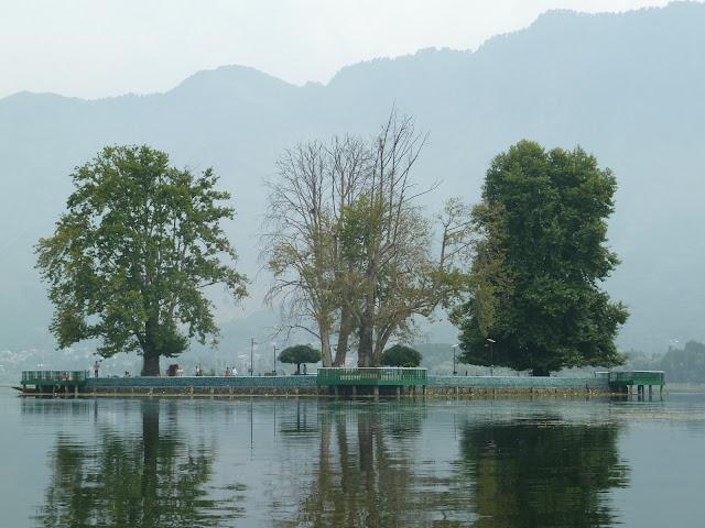 5-Char-Chinar-Srinagar