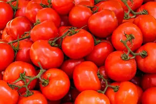 Tomatoes Don't Only Fight Birth Defects