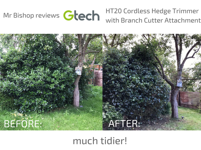 Before/After using GTech HT20 Cordless Hedge Trimmer