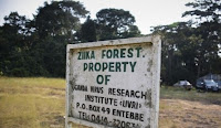 informasi virus zika - hutan zika di uganda