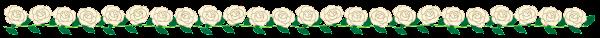 白いバラのライン素材