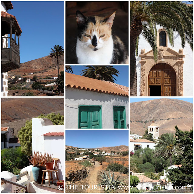 Entrance doors, a dark wooden balcony, palm trees, a white church tower, a cat in a Spanish village.