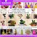 CRAS de Cícero Dantas-BA oferece curso gratuito de Flores