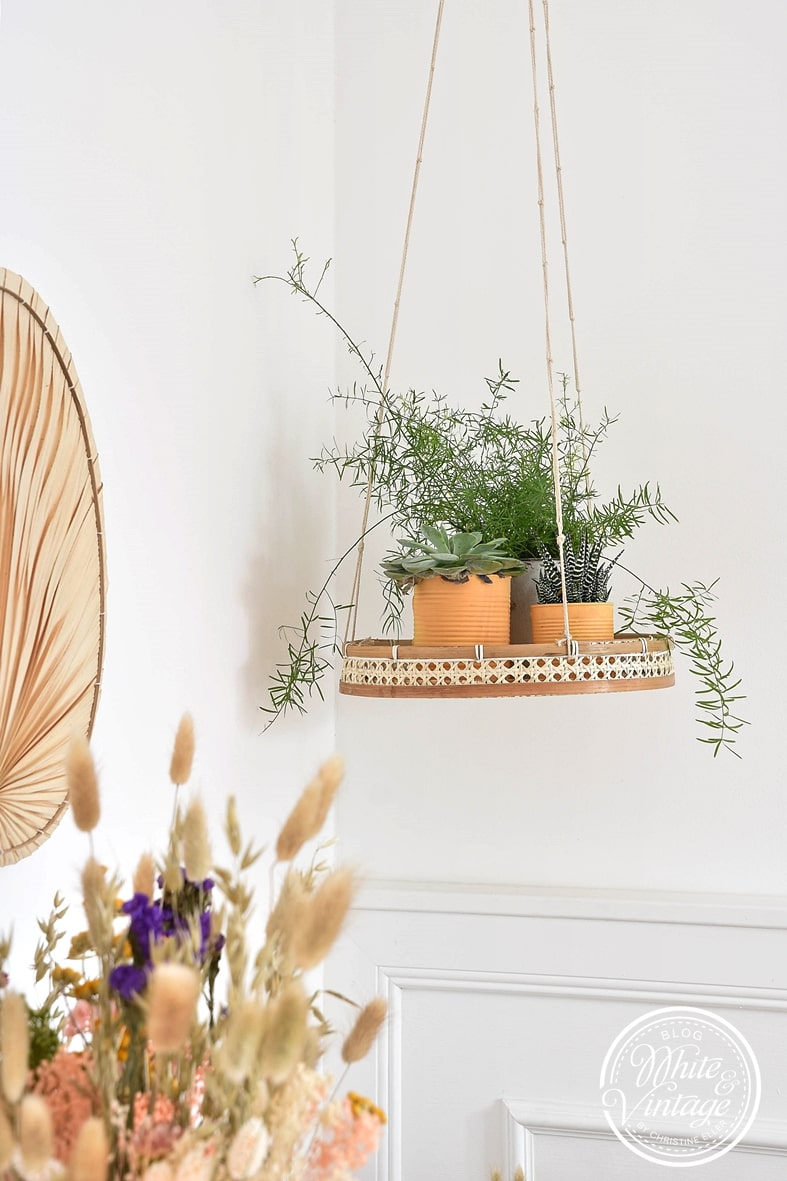 Dekoideen mit Zimmerpflanzen und Trockenblumen