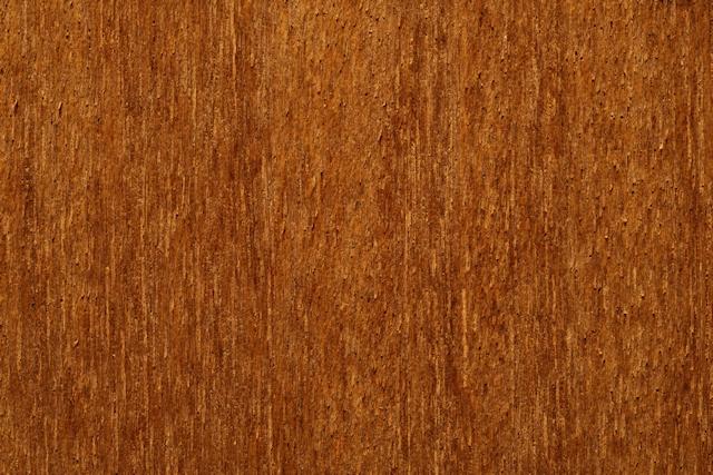 Dark macro wood texture