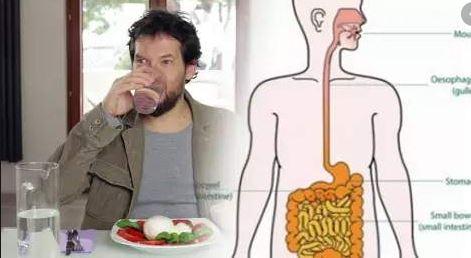 Is it harmful to drink water immediately after a meal? क्या भोजन के तुरंत बाद पानी पीना हानिकारक है ?