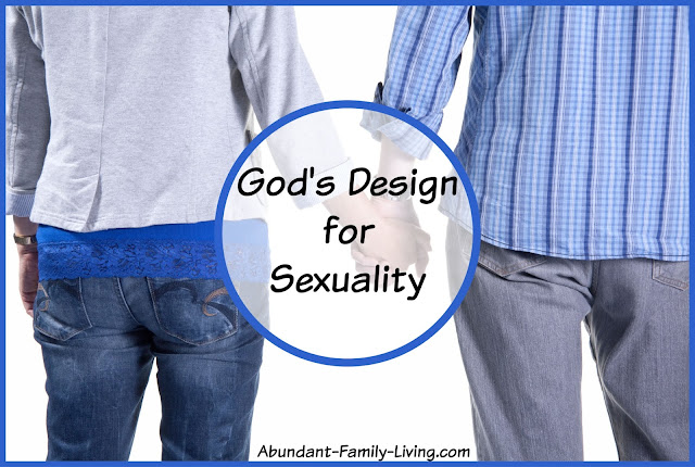 God's Design for Sexuality