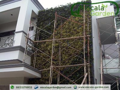 Jasa Pembuatan Taman Vertikal Pasuruan