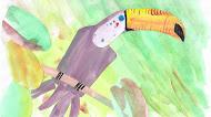 芒果树上的犀鸟