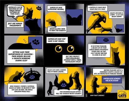 Black Cat Day comic strip