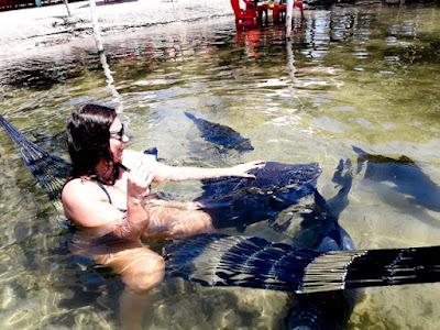Alimentando os tambaquis na lagoa