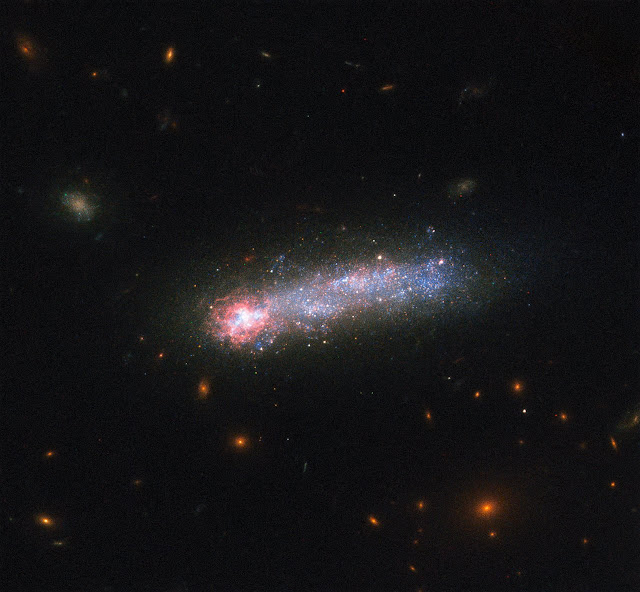 The tadpole-shaped galaxy Kiso 5639 is like a relic of our past.