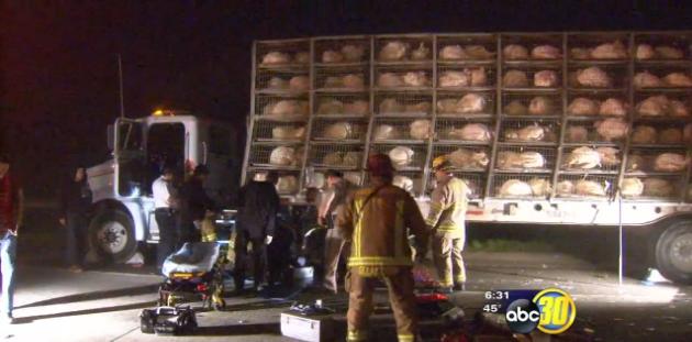 MEC&F Expert Engineers : 1 KILLED AFTER 4 TRUCKS CRASH ON