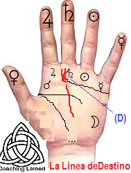 Quiromancia, Numerologia Cabalistica, Palmistry