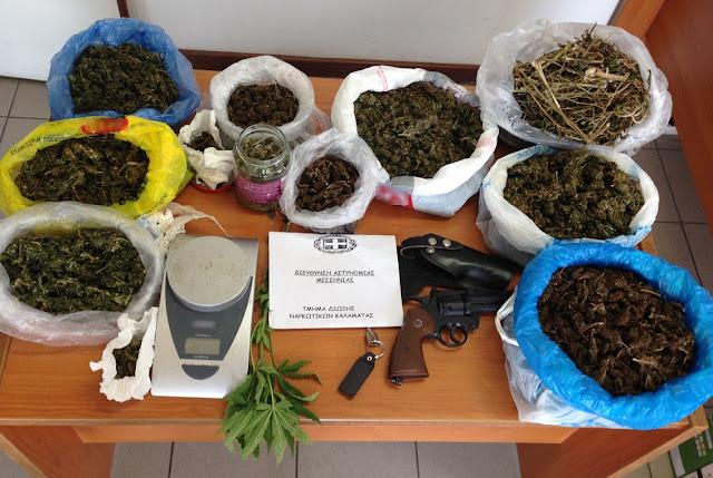 Συλλήψεις στην Μεσσηνία για ναρκωτικά όπλα και αρχαιότητες