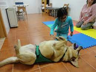 Fotografía de una sesión de terapia con animales en la asociación gallega Ramalladas