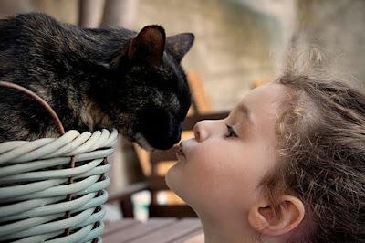 una niña le da un beso a un gato