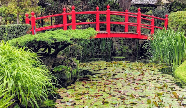 Things to do in Kildare: Visit the Japanese Gardens at the Irish National Stud