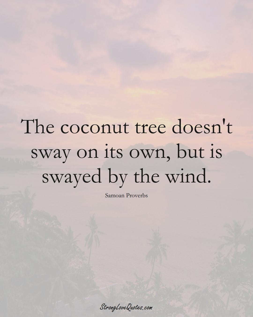 The coconut tree doesn't sway on its own, but is swayed by the wind. (Samoan Sayings);  #AustralianSayings