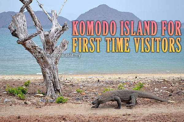 First Time Visitors Komodo Park