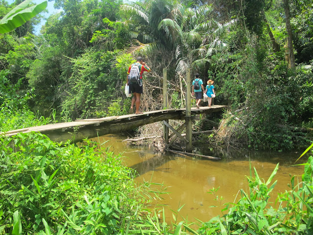 Rio Prumirim de Ubatuba