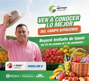 Publicidad CN