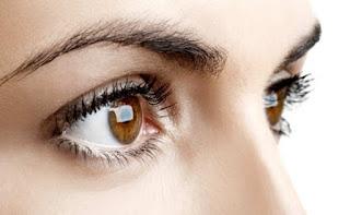 Indra Penglihatan (Bagian, Fungsi, dan Macam-macam Cacat pada Mata)