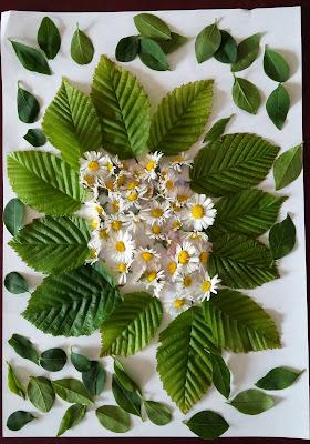 Mandala végétal