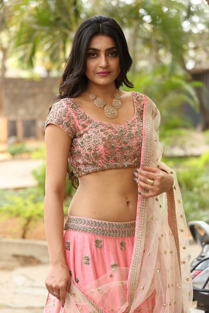 Avantika Mishra Hot Navel Hip Stills In Pink Half Saree