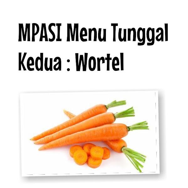 MPASI Menu Tunggal Sayur Wortel Sesuai Prinsip WHO