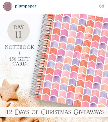 Plum Paper Notebook