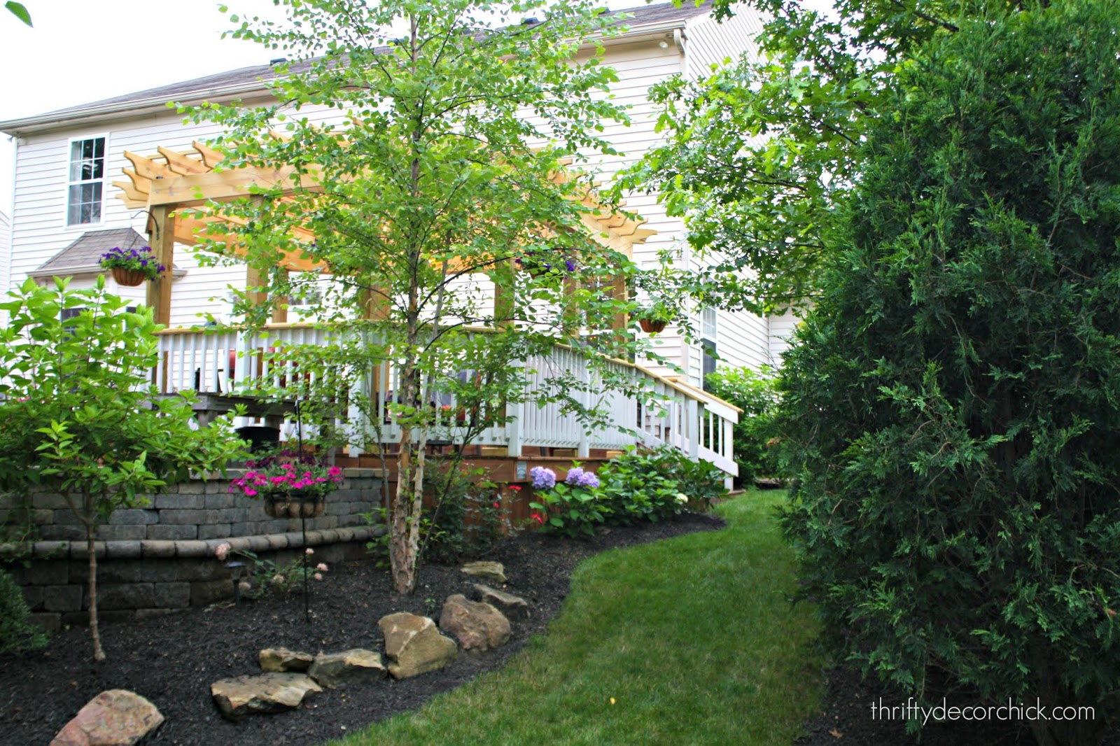 Landscaping around patio with rocks and plants