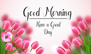 Good Morning Royal Images Download for Whatsapp Facebook54