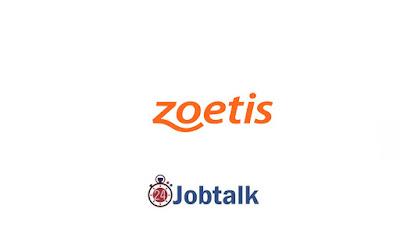 Zoetis Egypt Summer Internship