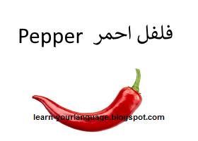 فلفل احمر : Pepper