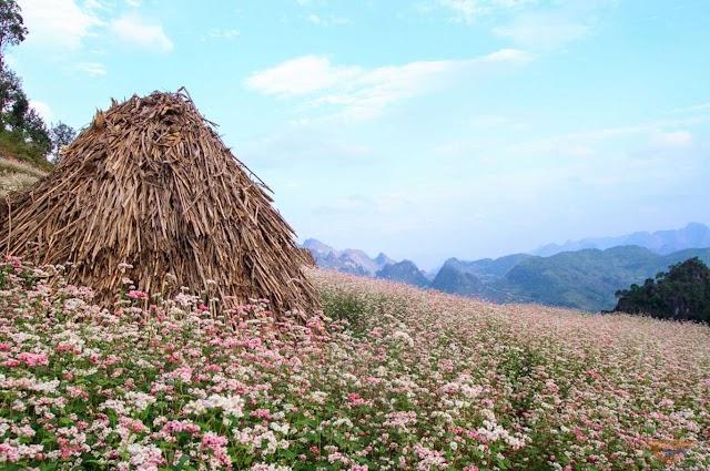 6 most beautiful autumn tourist destinations in Vietnam