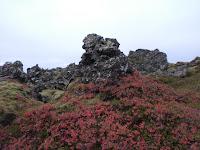 The Berserker's Lava Field, West Iceland