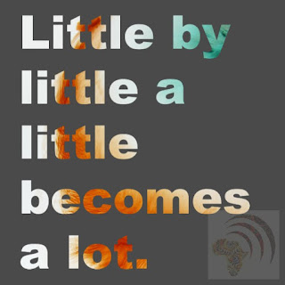 African proverb Little by little a little becomes a lot.