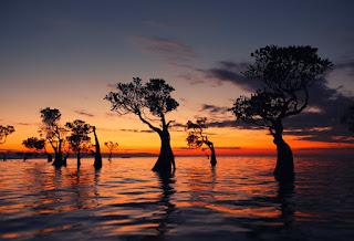 7 Destinasi wisata favorit di pulau Sumba