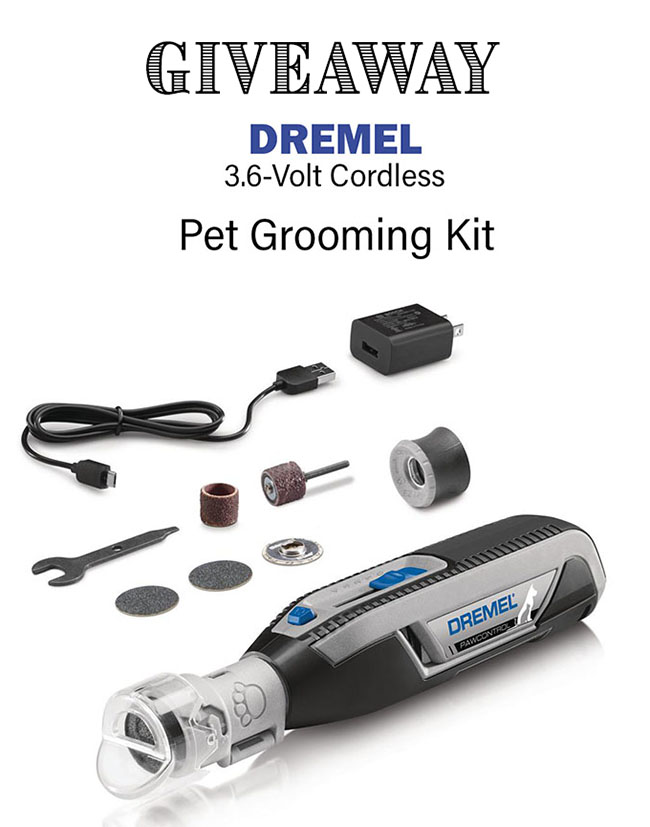 Dremel pet grooming kit