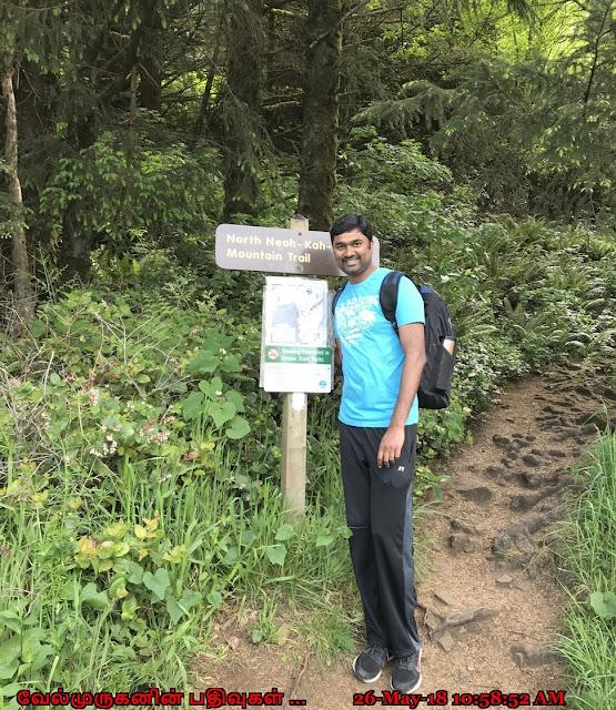 Neahkahnie Mt Hike Oregon