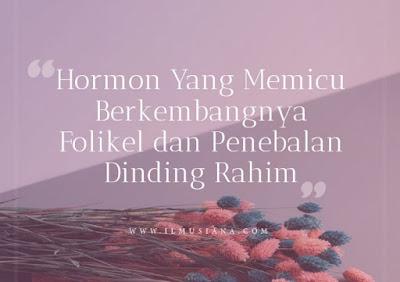 Hormon Yang Memicu Berkembangnya Folikel dan Penebalan Dinding Rahim