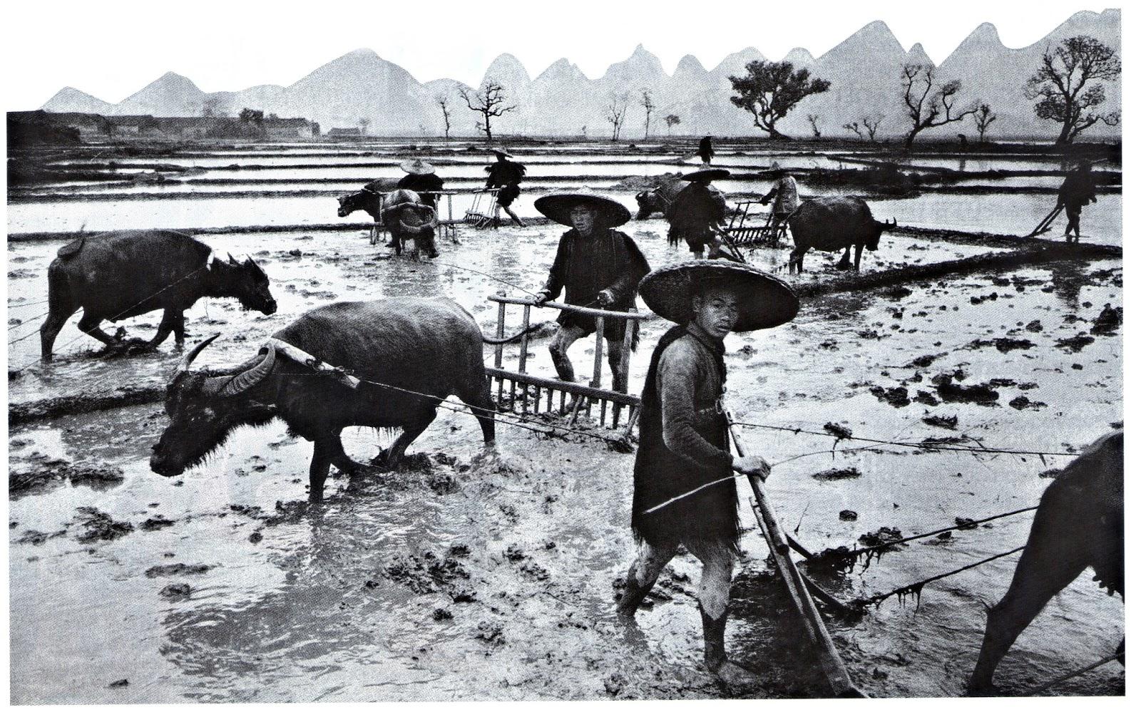 Resultado de imagen para como era china antes de la guerra