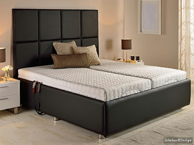 Electric Adjustable Beds For More Comfort And Fun 1