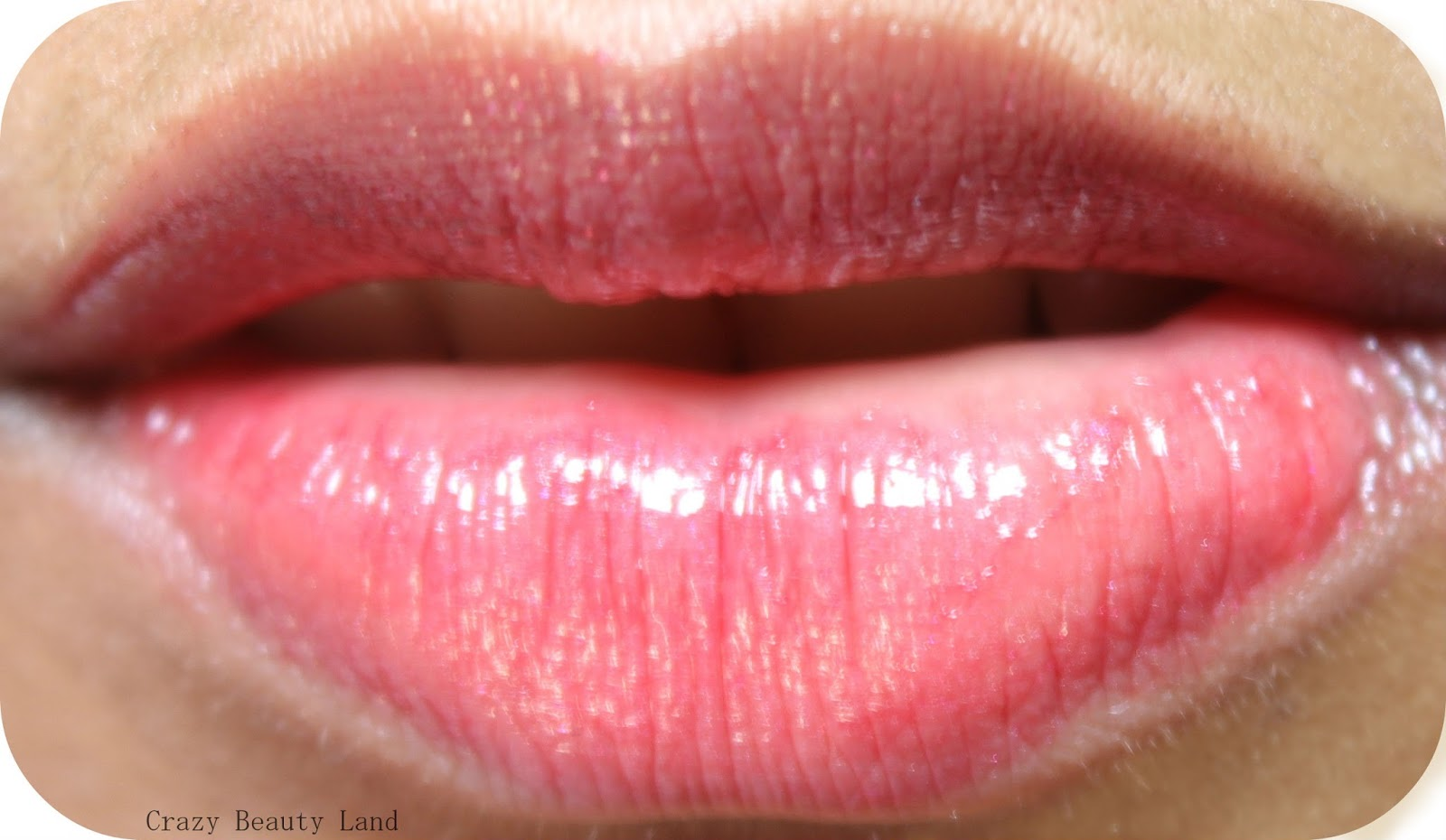 L'Oreal Shine Caresse Lip Color Bella (604) Review Swatch
