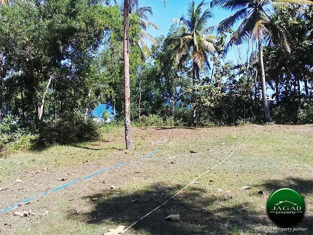 Tanah Luas area Wisata Pantai Parangtritis