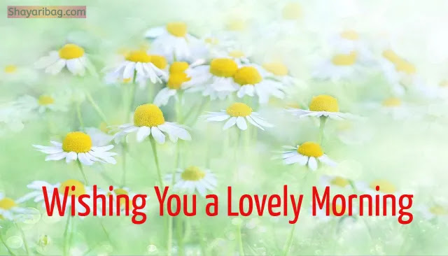 Good Morning Flowers Download Image