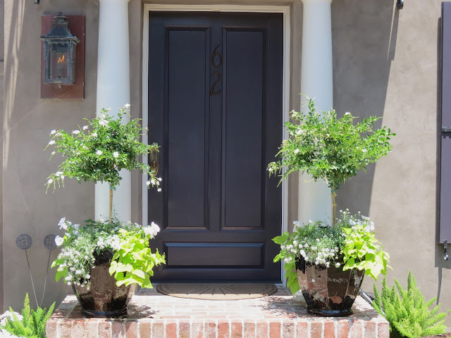 charleston sc front door entryway entrance gardens gardens award winning black glossy pot