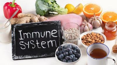 Makanan Untuk Meningkatkan Sistem Imun Tubuh