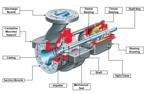 Components of Centrifugal Pump